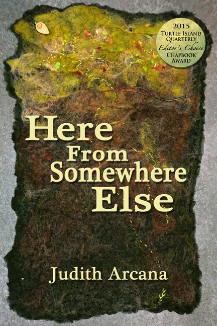 HFSE_front_cover_small